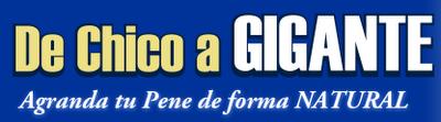 20120626203316-pene.png